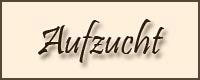 http://www.crystalclouds.de/menubilder/aufzucht.jpg