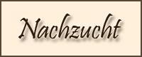 http://www.crystalclouds.de/menubilder/nachzucht.jpg